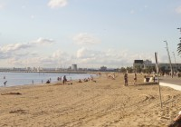 Summer Time In Melbourne's St Kilda District