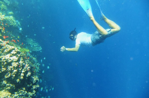 Snorkeling Menjangan Island Bali