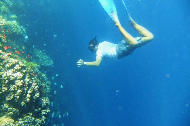 Snorkeling Menjangan Island Bali