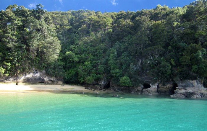Abel Tasman National Park New Zealand Beach
