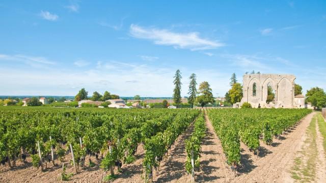 Top 5 Experiences in Blaye Cotes de Bordeaux, France