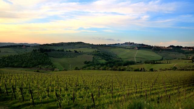 Wine Wanderings in Tuscany – Montalcino