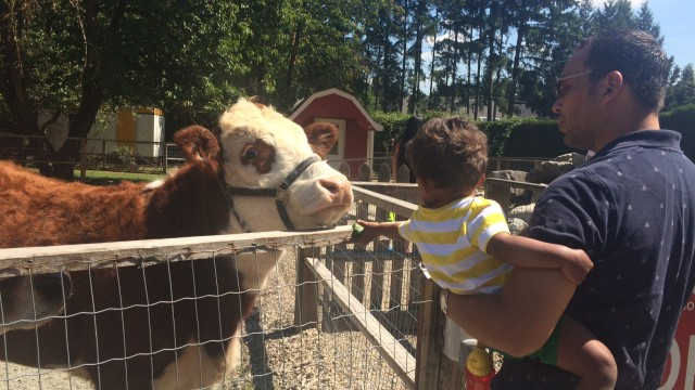 Summertime Activities for Kids in Vancouver, Canada