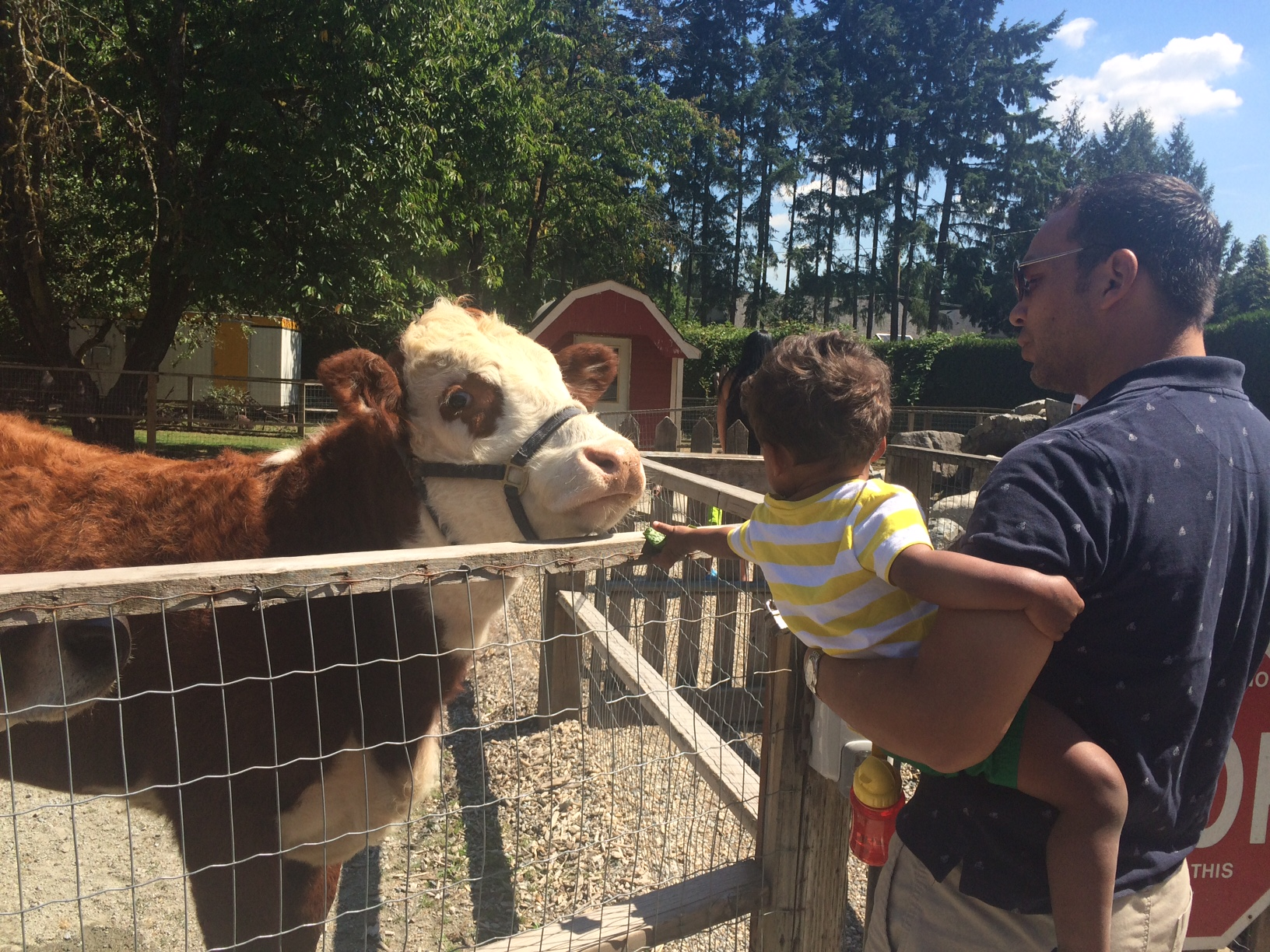 Maplewood Farm North Vancouver Kids Activities