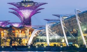 Singapore's Top Celebrity Chef Restaurants
