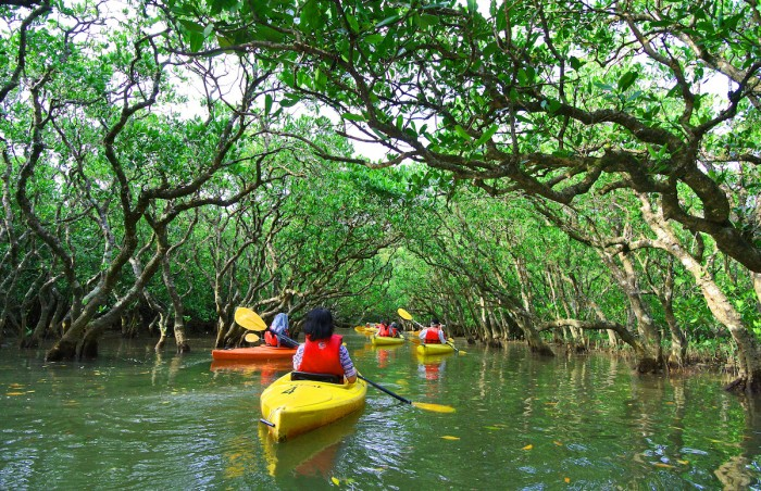 Fitness Holidays in Southeast Asia Kayaking