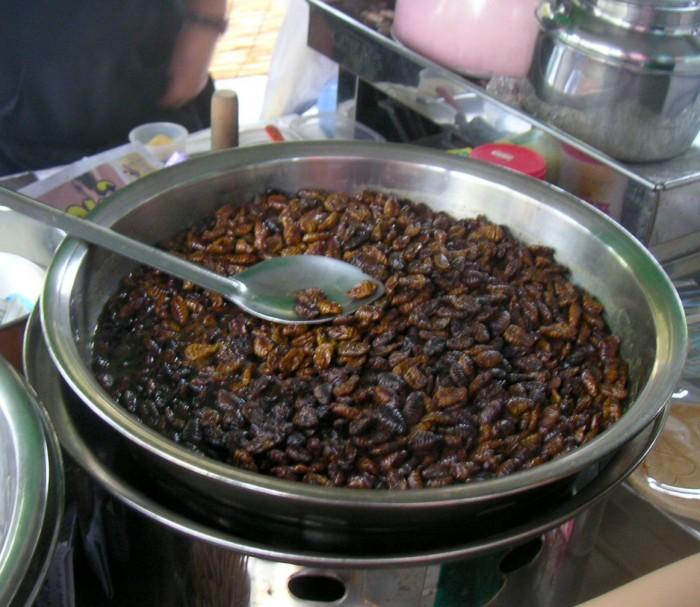 Beondegi - Unique Korean Food