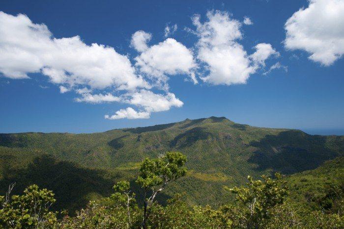 Black River Gorges National Park Mauritius