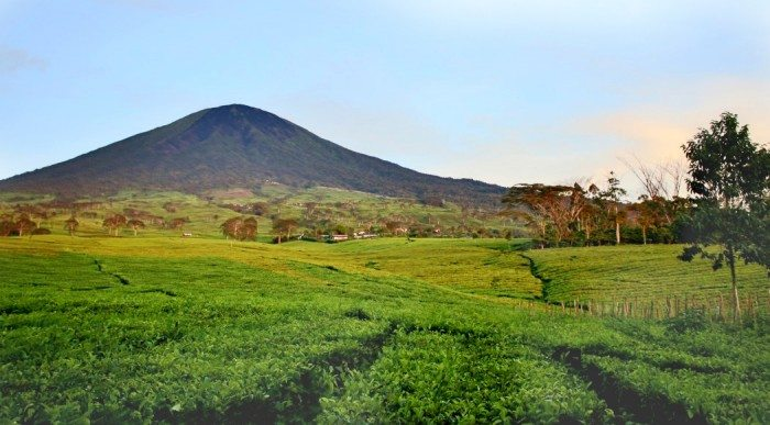 Mount Dempo Pagar Alam South Sumatra