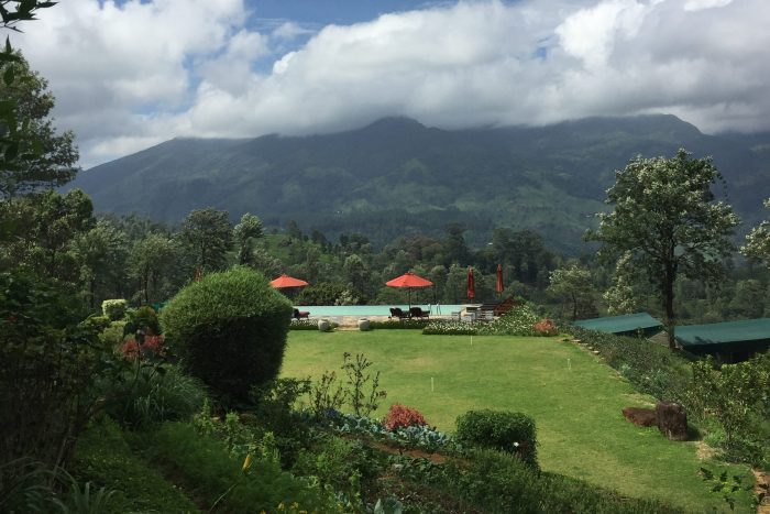 Madulkelle Tea Plantation and Eco Lodge