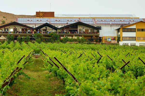 Top wineries in Asia - Sula Vineyards in Nashik India