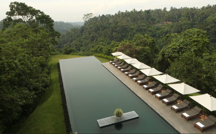 Alila Ubud Infinity Pool