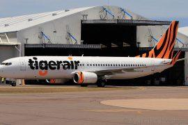 Tigerair Image by RyanBernard22