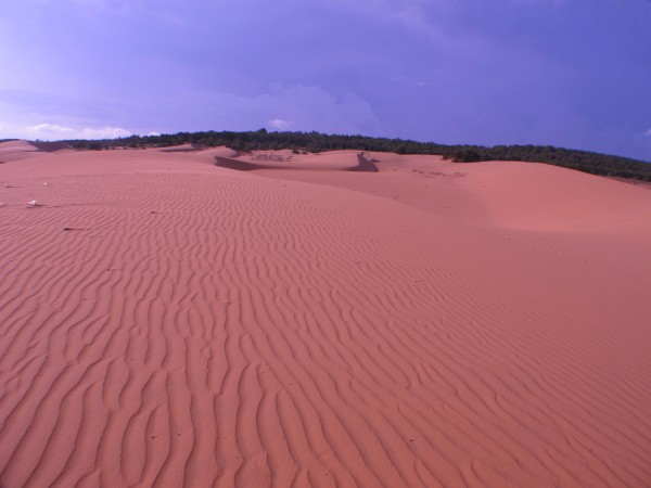 The Sand Dunes of Mui Ne