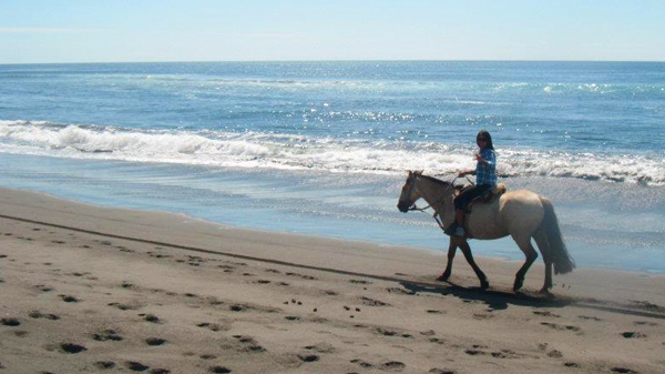 horse back riding in Chile