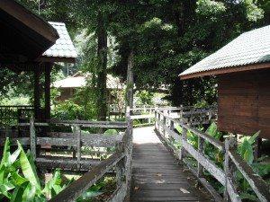 Borneo Rainforest Lodge Danum Vallely