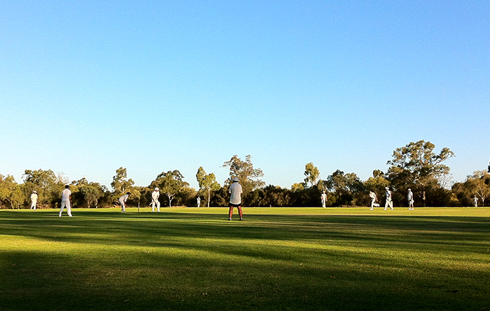 Cricket in Swan Valley by bicycle