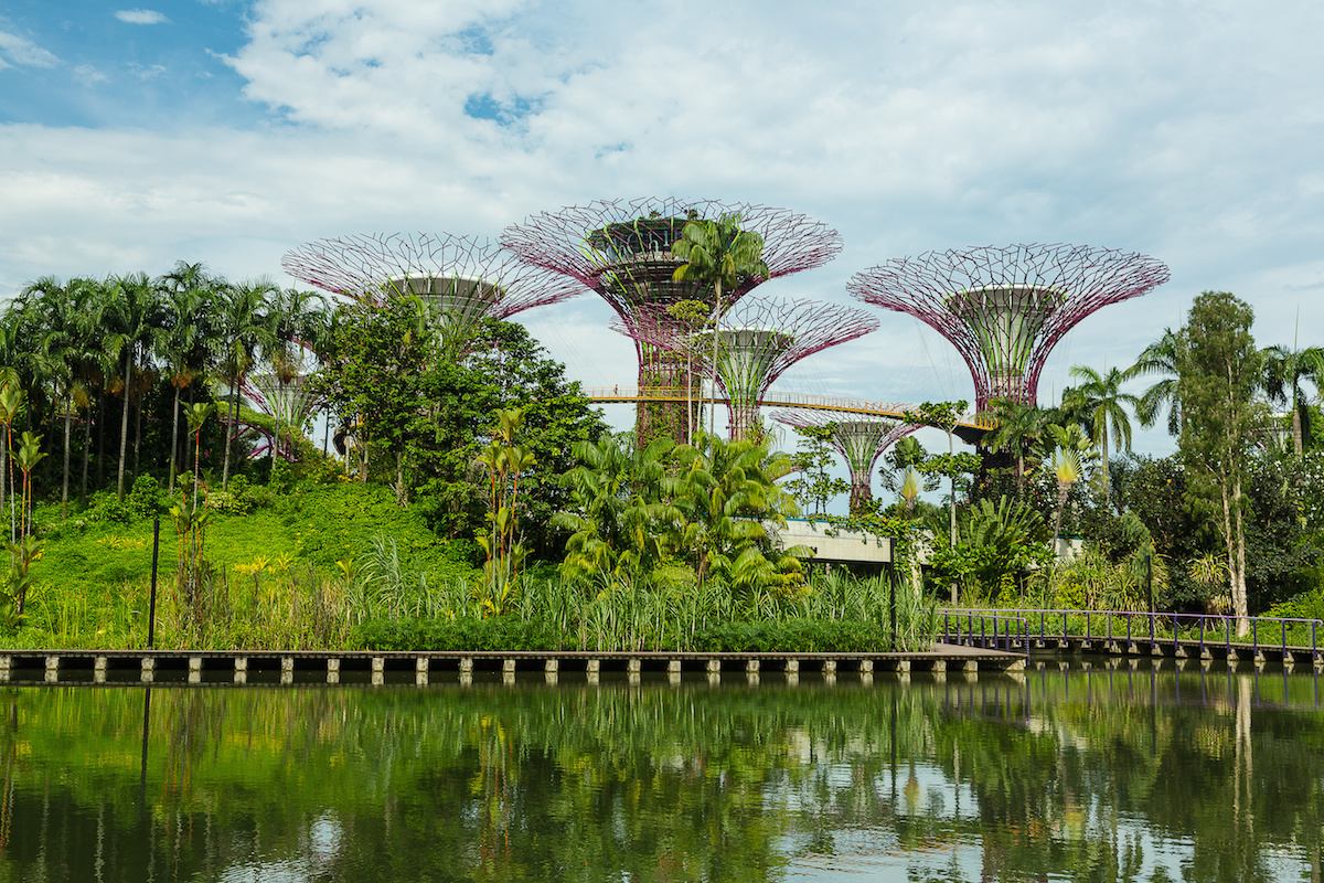 Cheap Things to do in Singapore - Gardens by the Bay