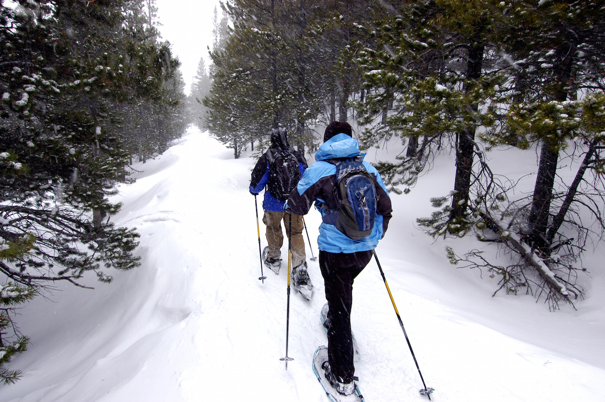 Best Winter Time Activities in Vancouver - Snow shoeing