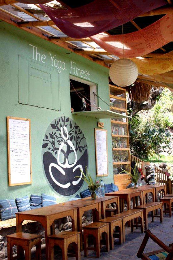 The Yoga Tree Yoga Retreat San Marcos Guatemala