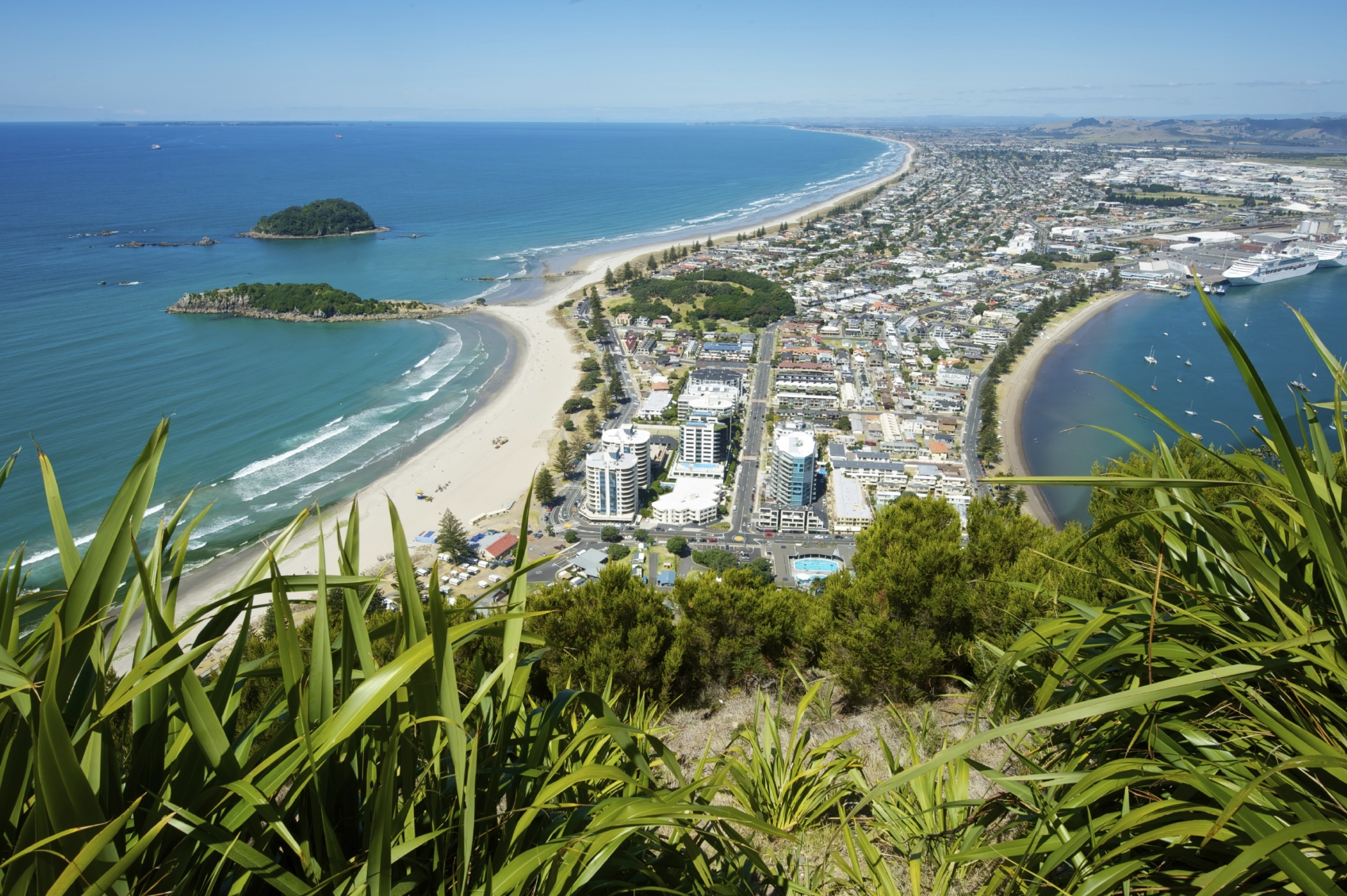 Top Reasons to Visit New Zealand