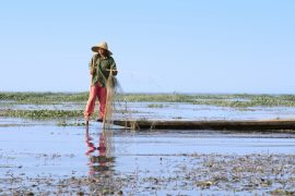 Inle Lake Myanmar Fisherman